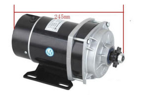 Hot Sale 350W 36V DC Brush Gear Motor, Electric Tricycle Motor, Motor Bike, Electric Motors for Bikes pictures & photos