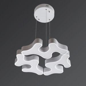 LED Pendant Lamp, LED Pendant Light, LED Lighting (HS30092DB)