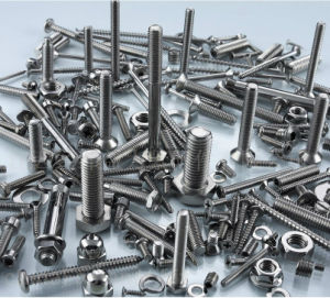 Stainless Steel AISI 304/316 Bolt pictures & photos