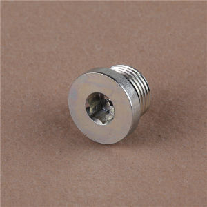 Bsp Male Captive Hollow Hex Plug (4BN-WD) Hydraulic Adapter pictures & photos