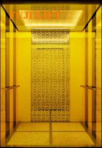 Titanium Gold FUJI Passenger Elevator on Sale pictures & photos