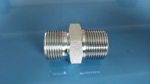 Bsp/NPT Male Adapter Hydraulic Nipple (1BN) pictures & photos