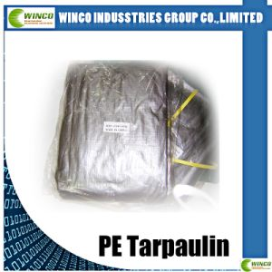 China PE Tarpaulin with Cover pictures & photos