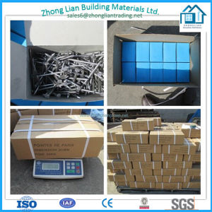 25kg Cartons Common Nail Roofing Nail (ZL-CN) pictures & photos
