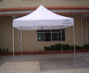 Folding Tent Roll-up Door with Zip Access pictures & photos
