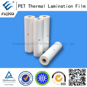 Polyester Film for Photos Laminating 80mic pictures & photos
