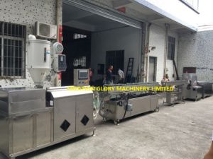 High Quality Medical Infusion Tubing Plastic Extrusion Production Machinery pictures & photos