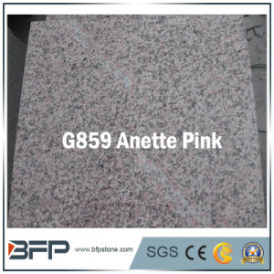 Granite & Marble Stone Floor Tile / Flooring/Stair/Step Tile pictures & photos