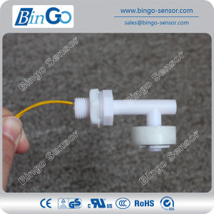 White PP Small Size Side-Mounted Float Level Switch pictures & photos