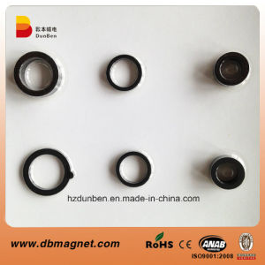 Injection Bonded NdFeB Magnet for Electrical Rotor pictures & photos