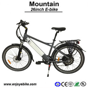48V500W Motor Samsung Panasonic Battery Electric Bike E-Bicycle E-Bike Electric Bicycle (PE-TDE11Z)