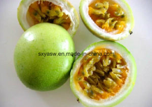 Passiflora Incarnata Extract Flavones Passion Flower Extract pictures & photos