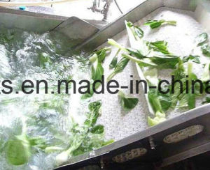 Vegetable Washing Machine/Vegetable Cleaning Machine pictures & photos