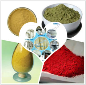 High Quality Grape Fruit Enzyme Powder