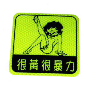 Custom Reusable Pet Car Sticker pictures & photos
