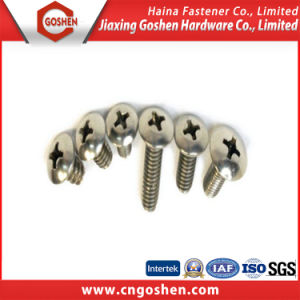 Stainless Steel Phillips Pan Head Machine Screw (M1.6~M10) pictures & photos