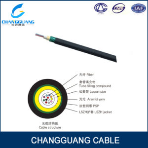 Access Building Optical Fiber Cable Indoor Outdoor Fiber Optic Cable ABC-Iis