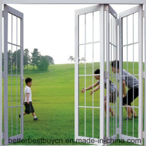 High-End Deisgn Aluminium Door with Decorative Strip pictures & photos