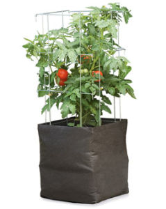 Root Control Non Woven Grow Bag for Gardening pictures & photos