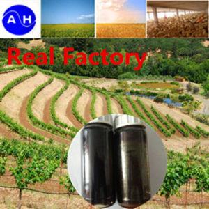 Foliar Fertilizer Vegetable Source Liquid Amino Acids Free From Chloridion Organic Amino Acids pictures & photos