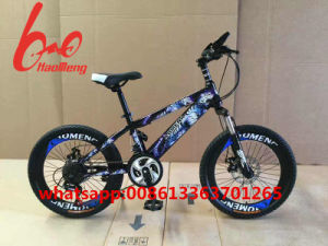 2016 Cheap 26 Size MTB Bike/Mountain Bicycle Suspension Bicycle/Carbon Fiber pictures & photos