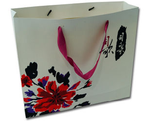 Printed Paper Shopping Bag with Cottom String