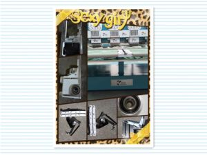 Single Head Machine for Embroidering Garments pictures & photos