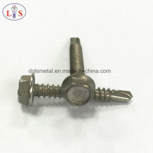 Stainless Steel 304 Hex Head Self Drilling Screw with Washer pictures & photos