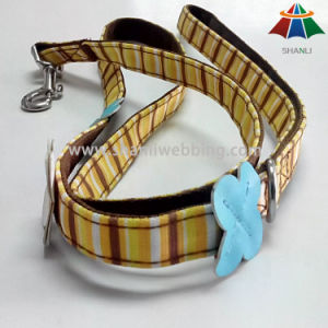2015 New Style Polyester Dog Leash pictures & photos