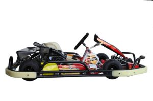 Go Karting with 200cc pictures & photos