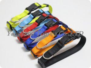 Nylon Cat Collar Dog Collar Pet Collar Pet Products pictures & photos