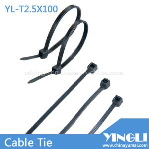 Nylon Cable Ties for Garden or Home Using (YL-T2.5X100) pictures & photos