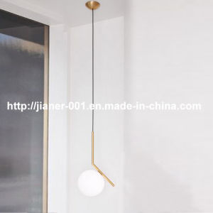 Simple Style Decorative Pendant LED Lighting in Glass Dinging Room pictures & photos
