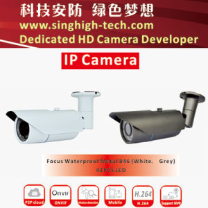 P2p Onvif 2MP 1080P Metal Housing Waterproof Sony Imx222 Varifocal IP CCTV Camera (NS5346V)