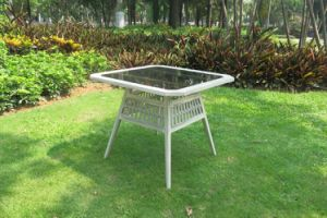 Garden Furniture Outdoor Rattan Dining Table (WS-15584) pictures & photos