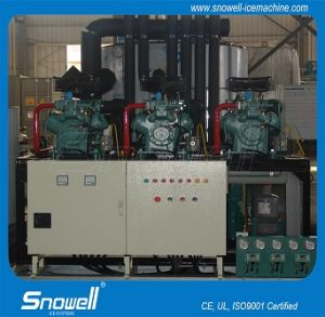 20t Per Day Flake Ice Machine From Snowell