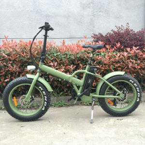 Big Tyre Electric Bike Folable for Europe Market