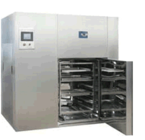 Dry Heat Aseptic (Eliminating Heat Source) Oven (sterilizing machine) pictures & photos