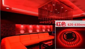 14.4W Ce and Rhos 60SMD3014 Red LED Strip pictures & photos