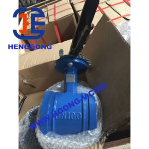 DIN/API Groove Cast Steel/Wcb Welded Butterfly Valve