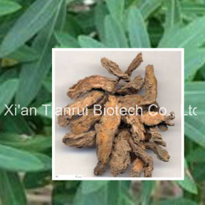 Radix Euphorbiae Pekinensis Extract Powder pictures & photos