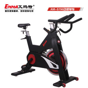 Spinning Bike (AM-S790) pictures & photos