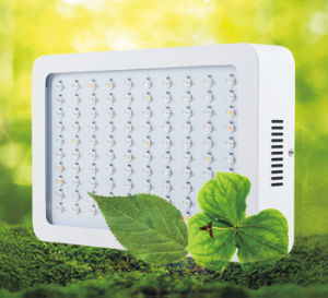 High Power 300W LED Plant Grow Light pictures & photos