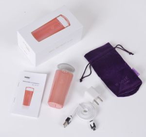 Handy Mist Sprayer Skin Care Equipment with Power Bank Wy-1001 pictures & photos