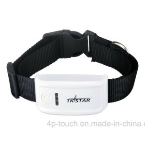 2017 New Design Pet GPS Tracker with Collar (TK909) pictures & photos