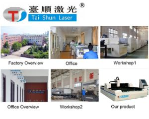 Gantry Type Metal Fiber Laser Cutting Machine, Laser Cutting Tools pictures & photos