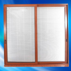 Aluminum Sliding Door Within Blinds