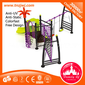 Small Slides with Swing Outdoor Playground for Sale pictures & photos