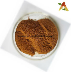 2.5% 5% Indian Ginseng Extract Ashwagandha Extract