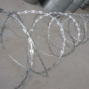 Security Fence Concertina Razor Wire pictures & photos